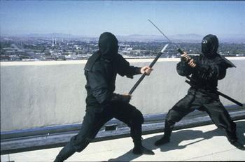 Die Rückkehr der Ninja