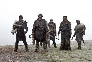 Das Blut der Wikinger