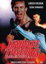 Fighting Spirit Loren Avedon deutsches DVD Cover