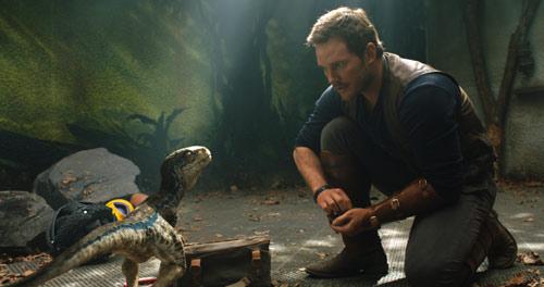 Jurassic World: Das gefallene Königreich mit Chris Pratt