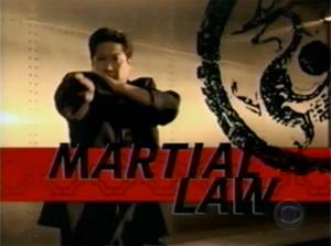 Martial Law - Der Karatecop