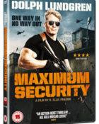 Maximum Security Larceny Cover