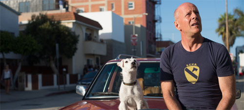 Once upon a Time in Venice Bruce Willis und Buddy